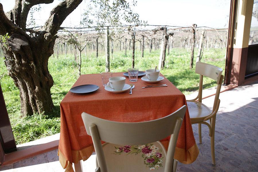 bed-e-breakfast-grappoli-di-sole16